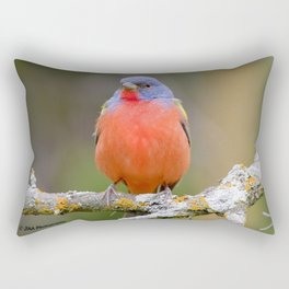 Male Painted Bunting Rectangular Pillow