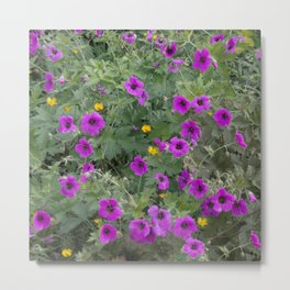 Wild Flowers in Purple and Yellow Metal Print