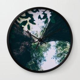 Redwoods Wall Clock