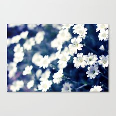 Flowers On A Cool Brooklyn Morning Canvas Print