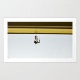Spider Trap Art Print