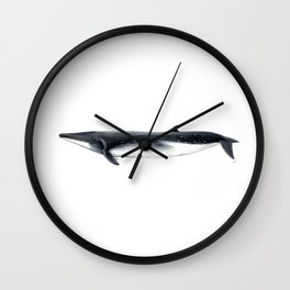 Bryde´s whale Wall Clock