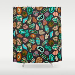 Healing stones Shower Curtain