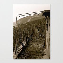 Sur La Montagne Canvas Print