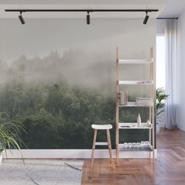 Forest Fog Photography | Woods | Misty | Mist | Forest Dew | Kaszuby Canada | Nature Photography Wall Mural