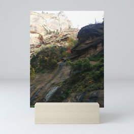 Lush Environment   Trees   Streams of Water   Rocky Terrain   Nature Mini Art Print