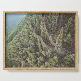 Forest Landscape Photography | Ariel View | Banff Gondola | Alberta | Canada Serving Tray