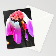 Hanging on to beauty Stationery Cards