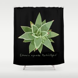 Succulent Species Echeveria agavoides 'Martin's Hybrid' Black Shower Curtain