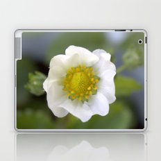 white strawberry flower. floral photo art. Laptop & iPad Skin