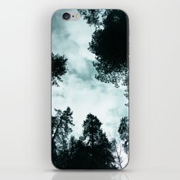 Redwood Forest Adventure - Nature Photography iPhone Skin