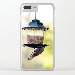 bird eating Clear iPhone Case
