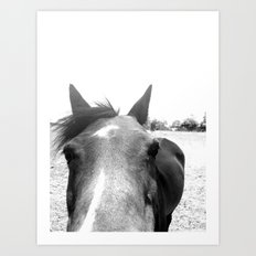 Horse Head V Art Print