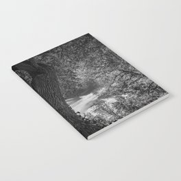 Crooked Oak (black and white) Notebook