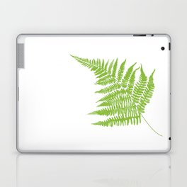Lady Fern Illustration Botanical Print Laptop & iPad Skin
