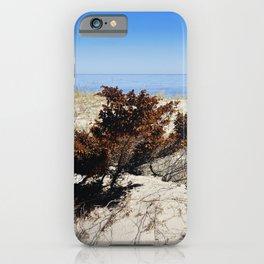 Beach Bush iPhone Case
