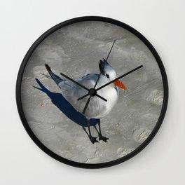 Siesta Key Tern Wall Clock