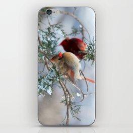 Shining on Her Own (Cardinal) iPhone Skin