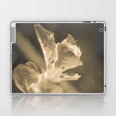 Trace of Spring Laptop & iPad Skin