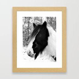 Horse. Black+White.Snow. Framed Art Print