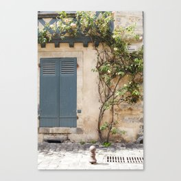 Roses on the Wall Canvas Print