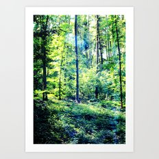 one summer day in the forest Art Print