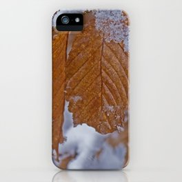 snow and leaves iPhone Case