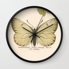 Antique Pale Green Butterfly Lithograph Wall Clock