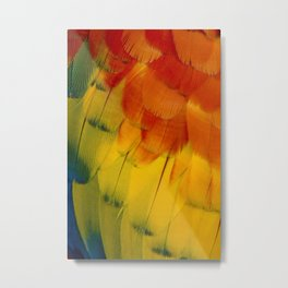 Texture: Colorful Parrot Feathers Metal Print