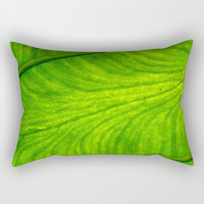 Leaf Paths Rectangular Pillow