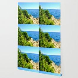 Cap Ferrat Seaside Wallpaper