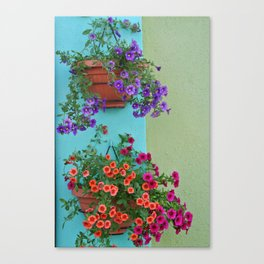 Colourful Hanging Flower Baskets Canvas Print