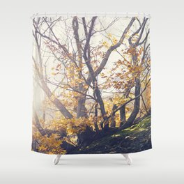 Dreamy yellow forest Shower Curtain