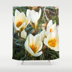 MEADOW of SPRING Shower Curtain