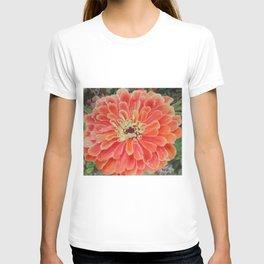 Orange Dahlia T-shirt
