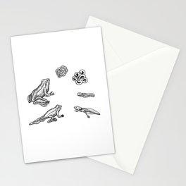 Ciclo de vida de una rana Stationery Cards