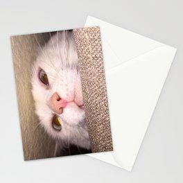 Artemis Peeking Stationery Cards