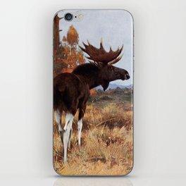 Kuhnert, Friedrich Wilhelm (1865-1926) - Wild Life of the World 1916 v.2 (Elk or Moose) iPhone Skin