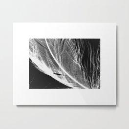 Feather Negative #3 Metal Print
