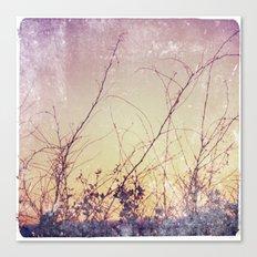 sea plants (purple) Canvas Print