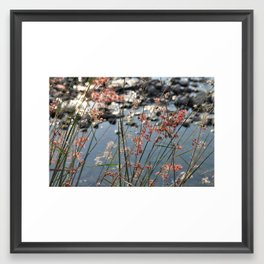 relaxed afternoon Framed Art Print