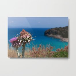 CretanThistle And Sea Metal Print