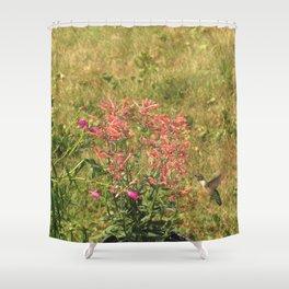 Hummingbird flower 28 Shower Curtain