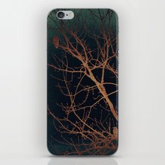 of birds and trees iPhone & iPod Skin