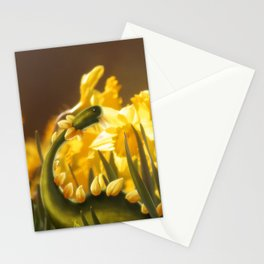 The Daffodil nommer Stationery Cards