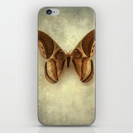 Furry brown beauty iPhone Skin