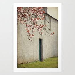 Lonely house Art Print