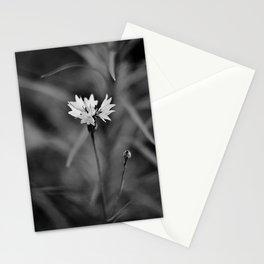 B&W Stationery Cards