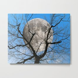 Evening moon Metal Print