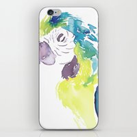 greg guillemin iPhone & iPod Skins featuring Greg  by Tatiana Shaffer